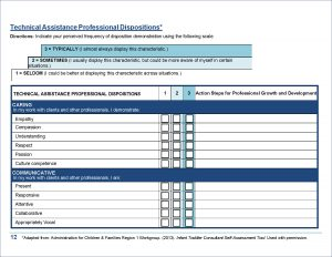 Download the Technical Assistance Professional Dispositions Tool here.