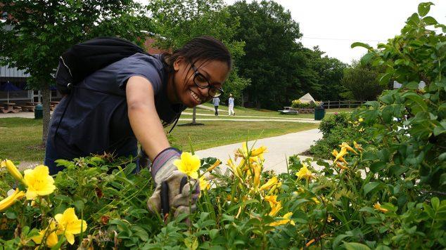 Summer Work for ME student tending gardens at EMCC.